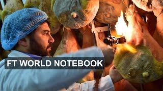 How Italy fell out of love with the EU I FT World Notebook