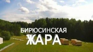 Наталья Костенко: экология станет одной из тем форума ОНФ