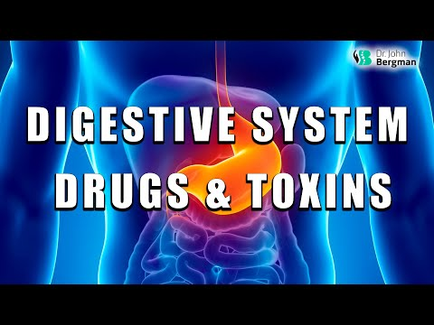 Digestive System Drugs & Toxins That Affect You