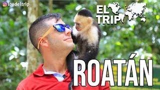 EL TRIP - ROATAN