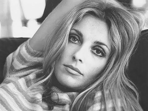 The Sharon Tate Murder Story in HD