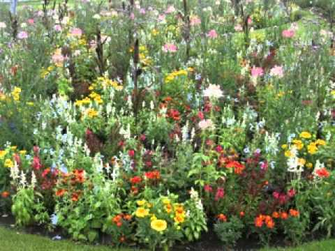 Cottage garden design ideas pictures - YouTube