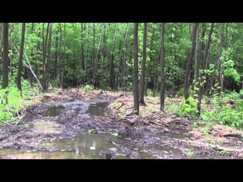 Destruction forêt/ milieux humides Drummondville