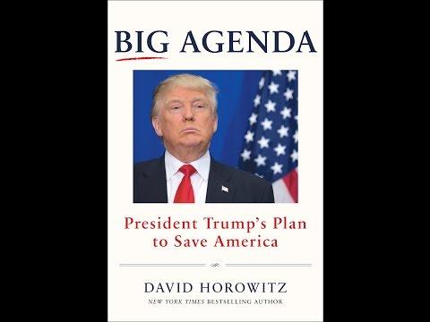 Big Agenda: President Trump's Plan to Save America, David Horowitz