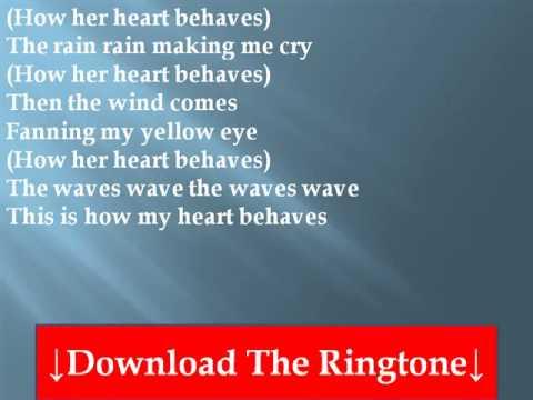 feist-how-my-heart-behaves-lyrics-drsrgh
