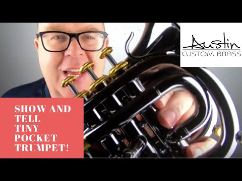 ACB  Show and Tell...  the TINY but supercool  Carol Brass Pocket trumpet in BLACK nickel finish!