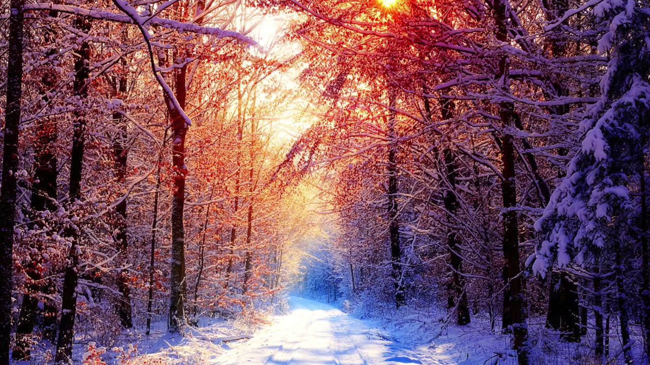 Kabbalistic Village Snowy Forest Relaxing Chill Out