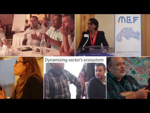 Jobs For Tunisia - 2016 overview