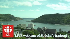 Webcam of St. John's Harbour