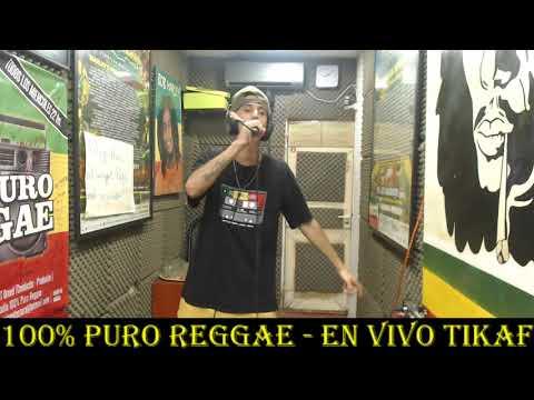 TIKAF EN VIVO (Full Show) EN 100% PURO REGGAE