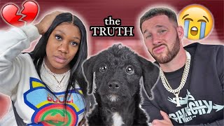THE TRUTH ABOUT CALI'S PUPPY BLACK STAR