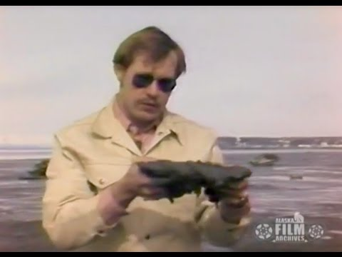 Future Shake (1977)