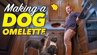 Cooking breakfast omelettes for two hungry dogs