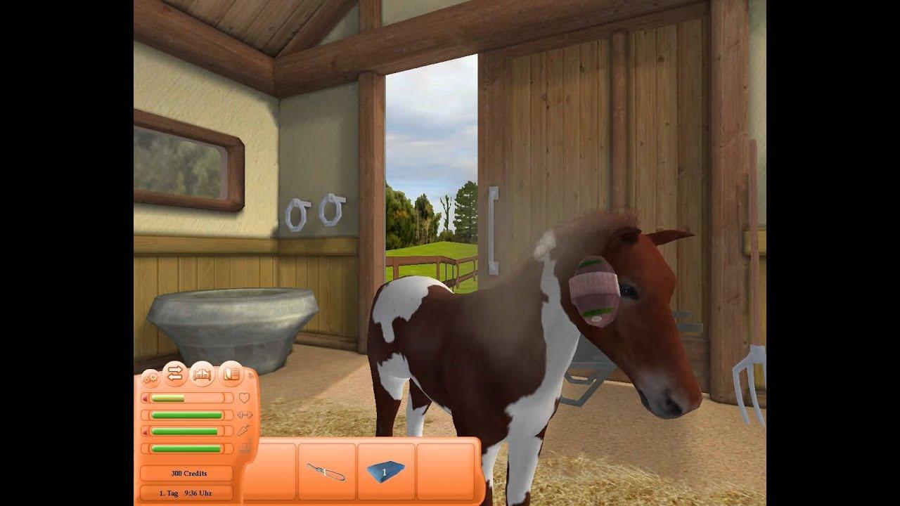 Pferde Spiele Deutsch
