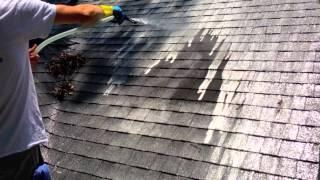 Roof Cleaning Savannah