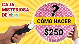 Cómo Hacer Caja Misteriosa de Ebay de $250 📦❓   Caja Sorpresa