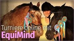 Online REITTURNIERE mit EquiMind | Wie geht das?