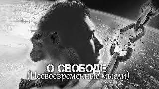 Андрей Ваджра. О свободе Несвоевременные мысли 27.02.2018. 22