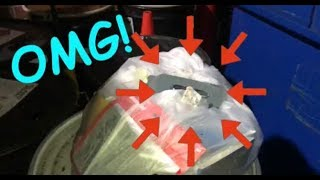 1 Bag and 1 Hard Drive! GameStop Dumpster Dives Night #6