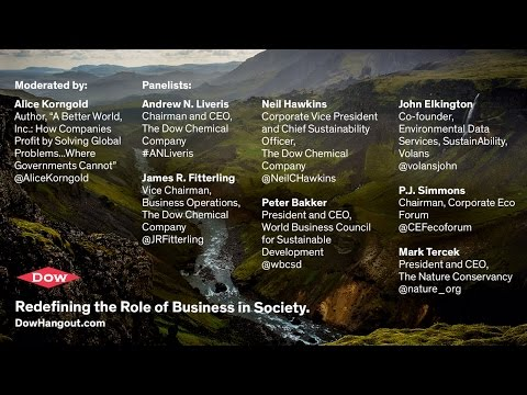 Redefining the Role of Business in Society - a Hangout with Global Sustainability Leaders