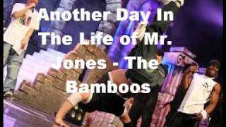 Another Day In The Life Of Mr. Jones - The Bamboos
