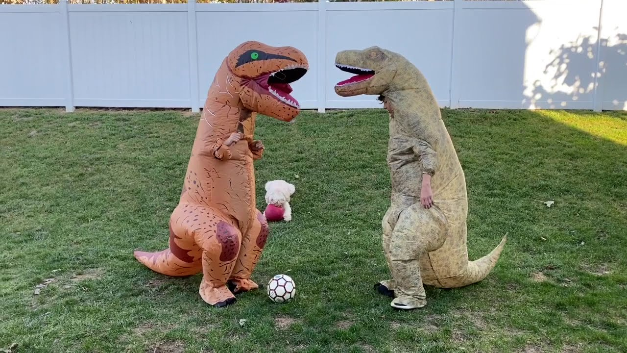 T-Rex Inflatable Costume Soccer Match