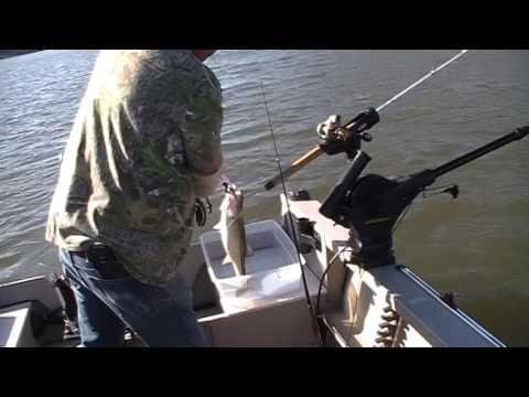 Fishing folsom lake january 2017 youtube for Folsom lake fishing report