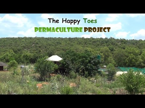 The Happy Toes Permaculture Project