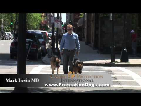 Protection Dogs by CPI (Mark Levin MD,