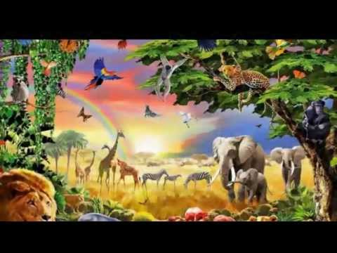 Lex Van Someren -- ♫  Morging  Reggae ♫