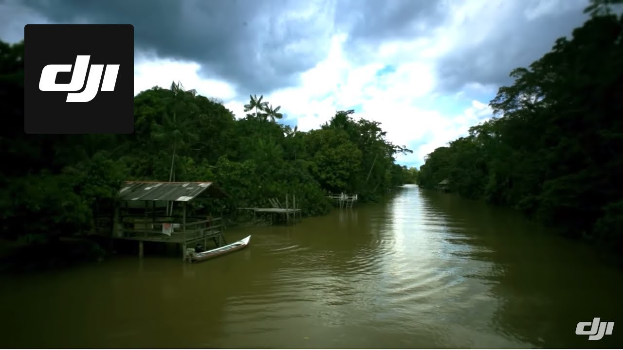 Dji The Life Of Amazon Rain Forest Youtube