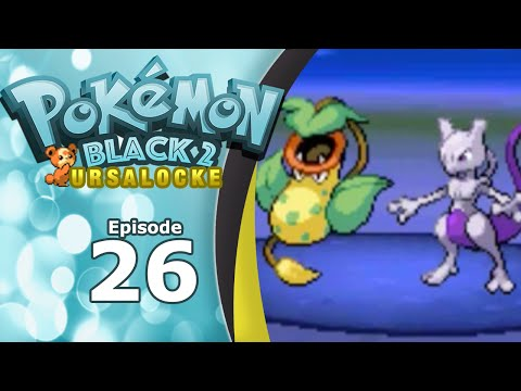 "Pokémon Black 2 Randomized Ursalocke | Episode 26: ""Ice Dude"" and Team Makeover"