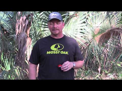 Turkey Hunting Tips with Scott Ellis-Less is more when calling in your gobbler