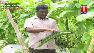 Farmer Bheemlinagam About Multi Crops | Nalgonda  telugu
