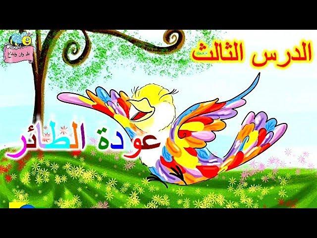 قصة( عودة الطائر) ، الدرس الثالث للصف الثاني