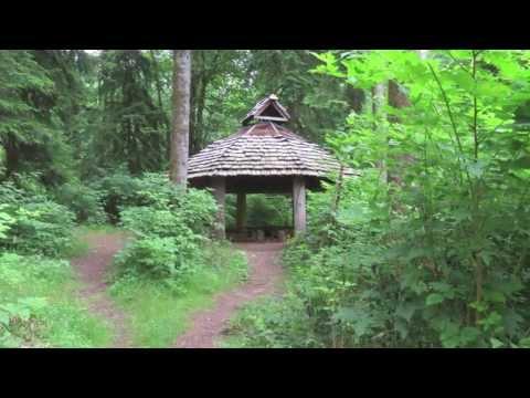 Virtual Tour of Alderleaf Wilderness College