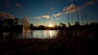 Красивое видео Осень Timelapse