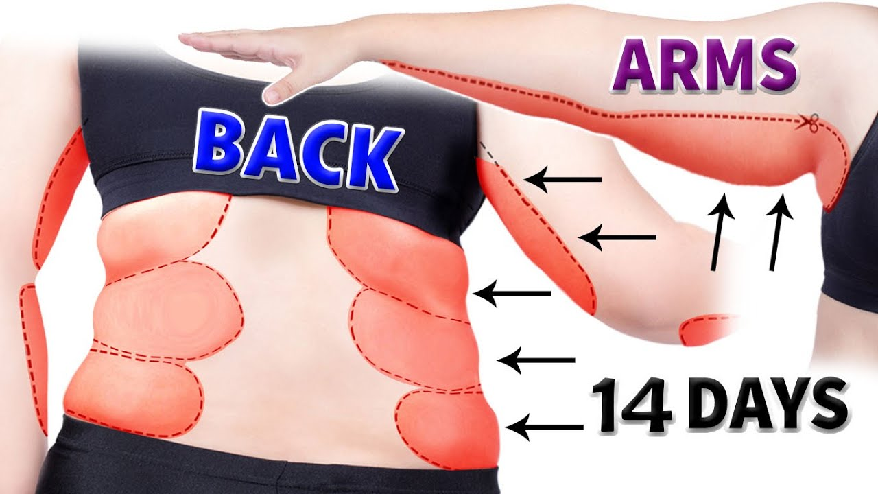 BACK FAT + ARM FAT | 14-Day 2in1 Workout for Women