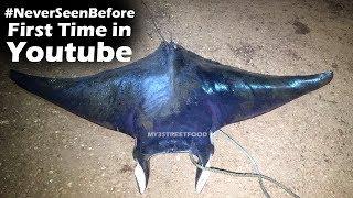 #NeverSeenBefore | 500 Kg's Manta Ray Fish | Skates Fish | Very Rare Big Fish | Streetfood
