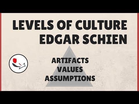 organizational-culture-edgar-schein