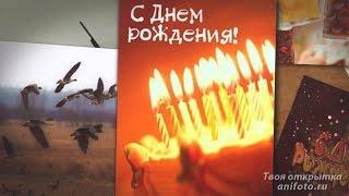 С Днем Рождения Мужчине Охотнику поздравления
