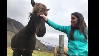 Viaje a Islandia - Sep 2018