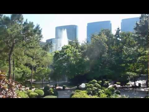 Kowloon Park, Hong Kong, HD Experience