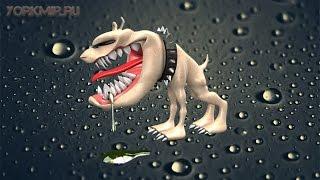 Слюна собаки | Лизоцим | Опасна ли слюна собаки?