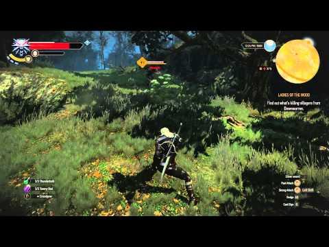 Witcher 3: Wild Hunt - Werewolf Fight Guide