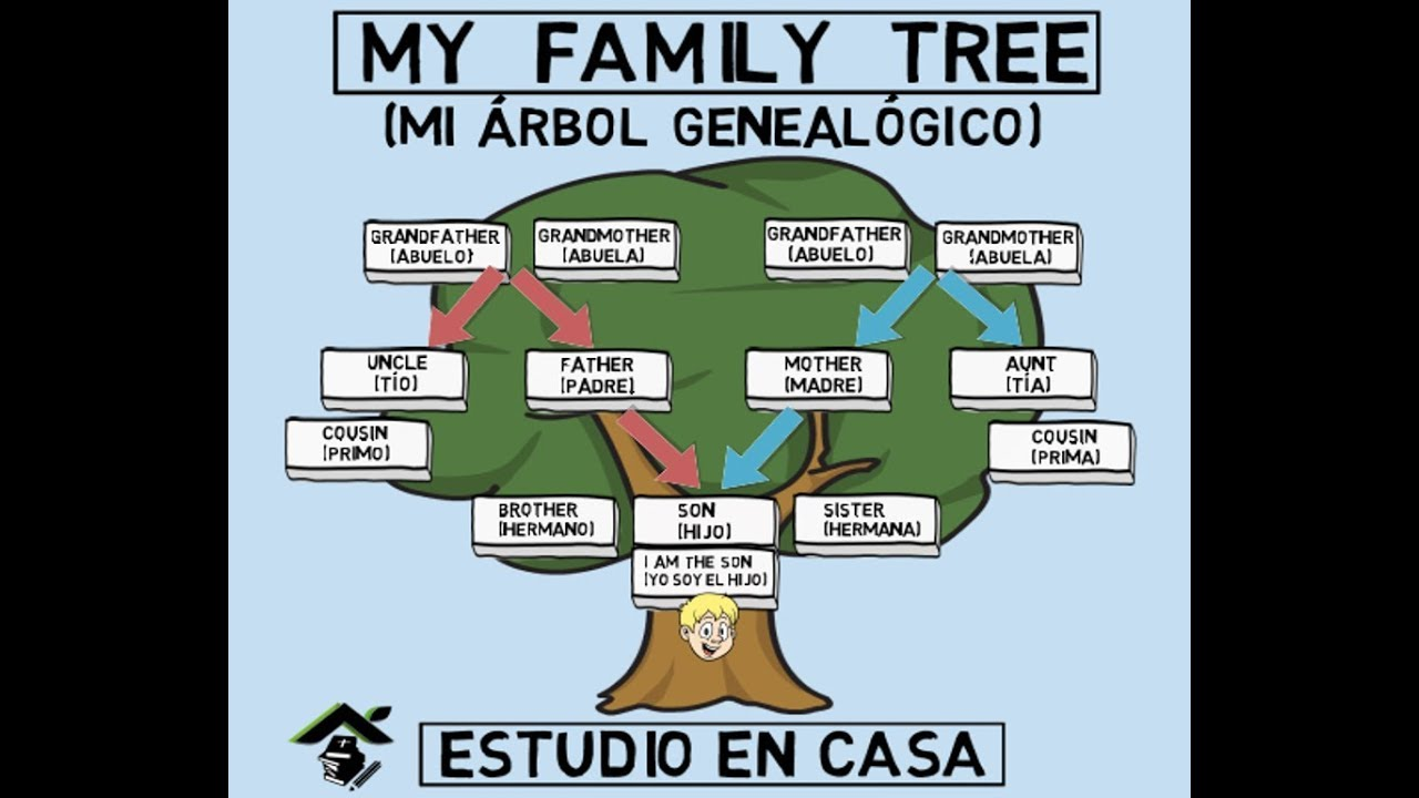 It is a graphic of Playful Photos Family Tree
