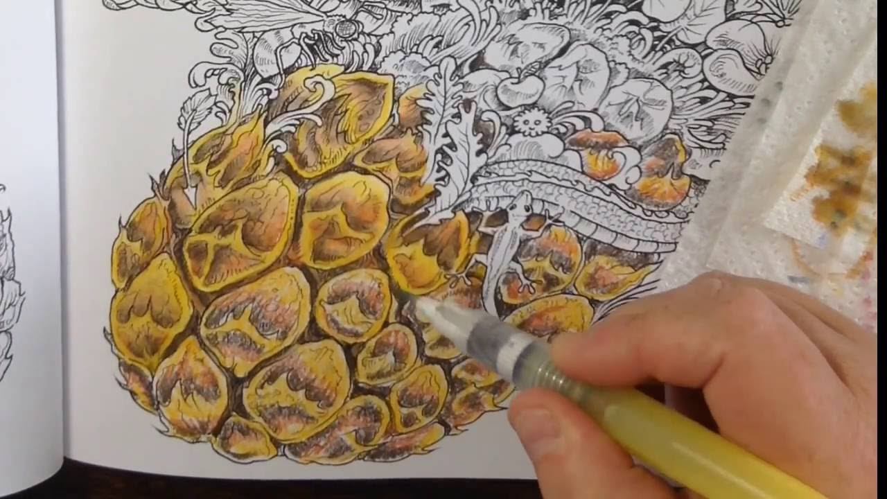 Tutorial Coloring With Neocolor Ii Crayons