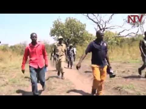 Balaalo being beaten in Gulu #Uganda. The #Rwandese come to Uganda with cattle, decimate environment
