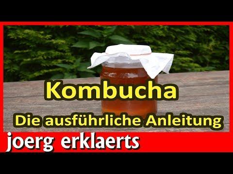 Kombucha der Teepilz Die Anleitung zur Herstellung des gesunden Getränks Nr.181