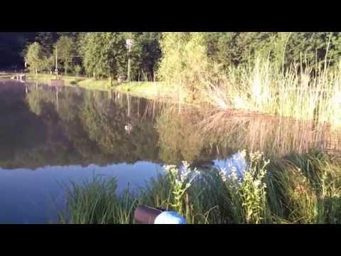 Зиборовка рыбалка